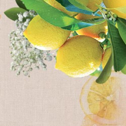 Limone e Agrumi
